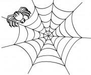 Coloriage Araignée et sa toile pour enfant