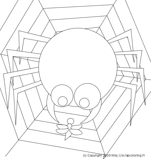 Coloriage et dessins gratuits Araignée et sa victime à imprimer