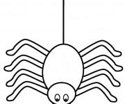 Coloriage et dessins gratuit Araignée et son fil à imprimer