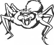 Coloriage Araignée méchante