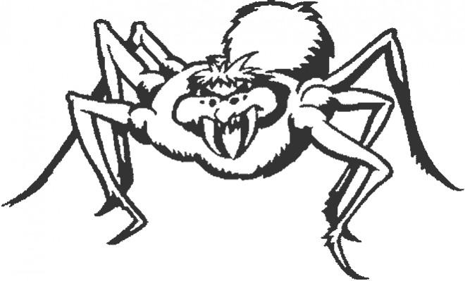 Coloriage et dessins gratuits Araignée méchante à imprimer