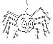 Coloriage et dessins gratuit Araignée simple à imprimer