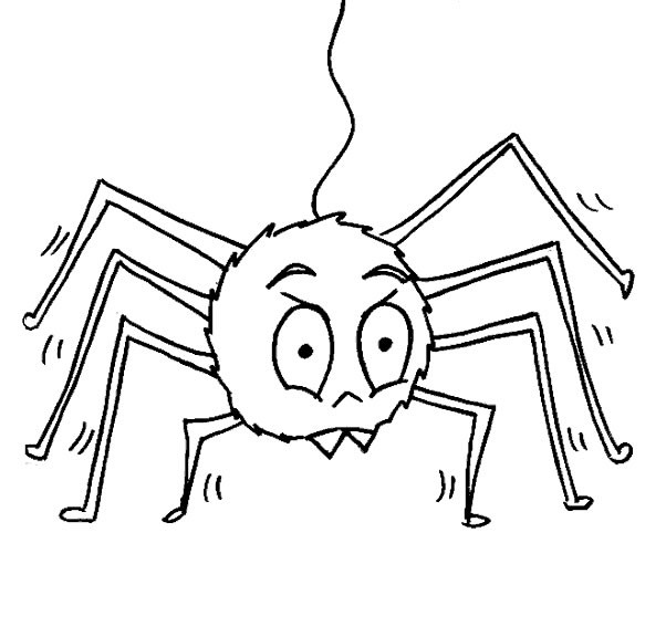 Coloriage et dessins gratuits Araignée simple à imprimer