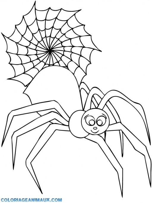 Coloriage et dessins gratuits Araignée souriante et Toile à imprimer