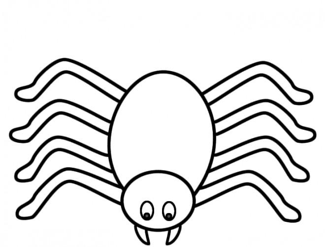 Coloriage araign e stylis dessin gratuit imprimer - Araignee dessin ...