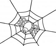 Coloriage Araignée sur sa toile stylisé