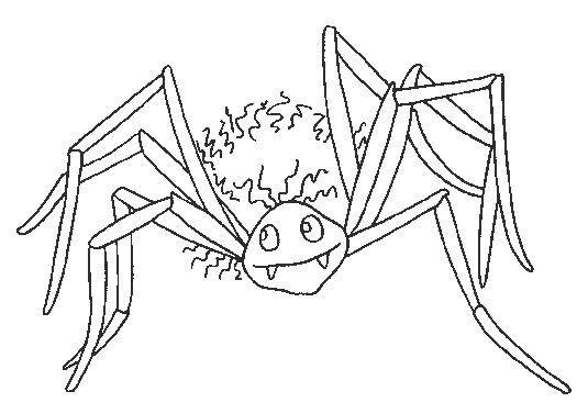 Coloriage et dessins gratuits Araignée Vampire à imprimer