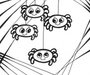 Coloriage Bébés d'Araignée