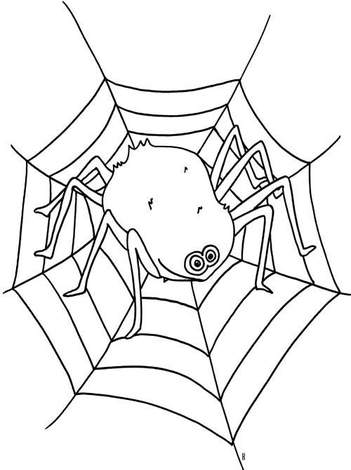 Coloriage et dessins gratuits Grosse Araignée sur La toile à imprimer