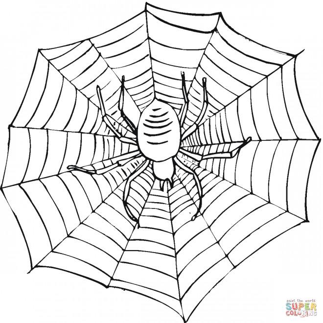 Coloriage et dessins gratuits Toile Facile à imprimer