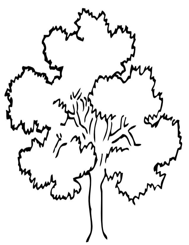 Coloriage et dessins gratuits Arbre en été à imprimer