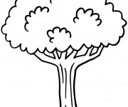 Coloriage Arbre facile