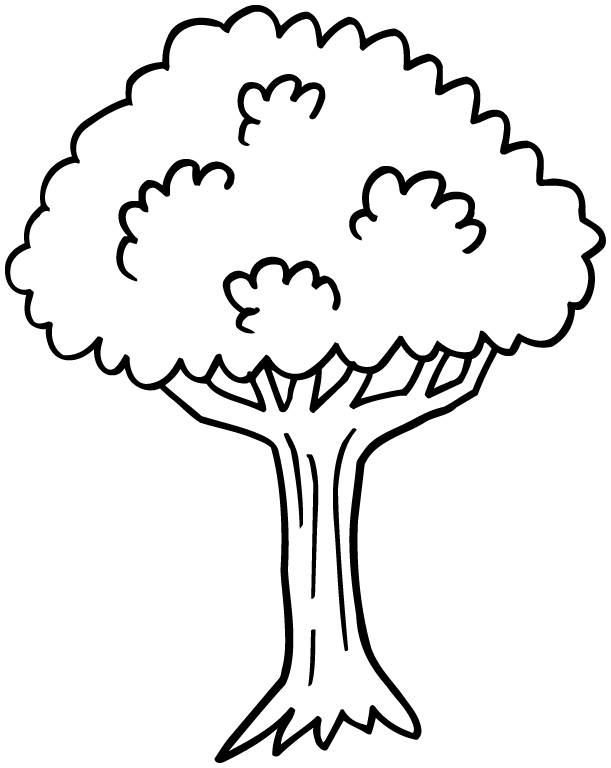 Photo Coloriage Arbre.Coloriage Arbre Facile A Colorier Dessin Gratuit A Imprimer