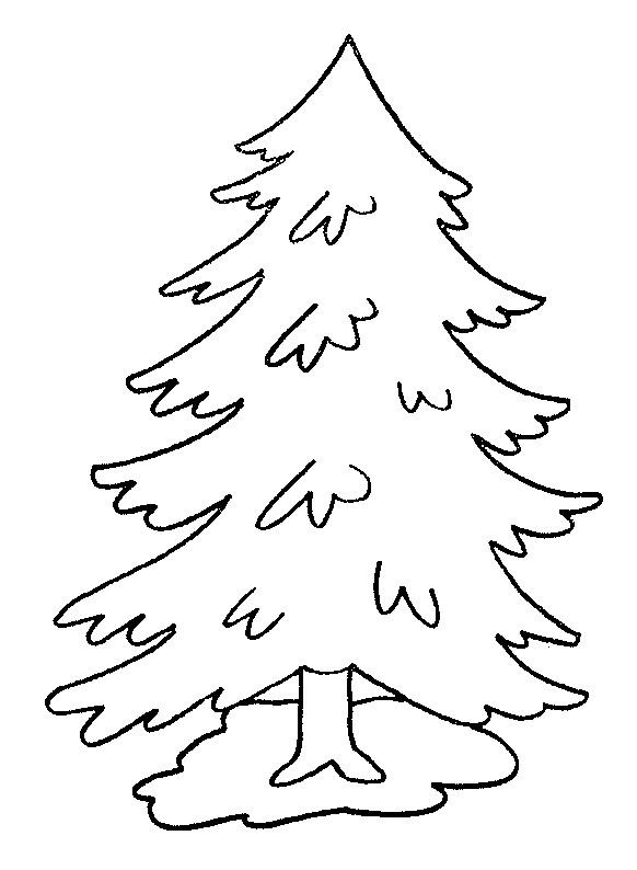 Coloriage et dessins gratuits Arbre Pine à imprimer