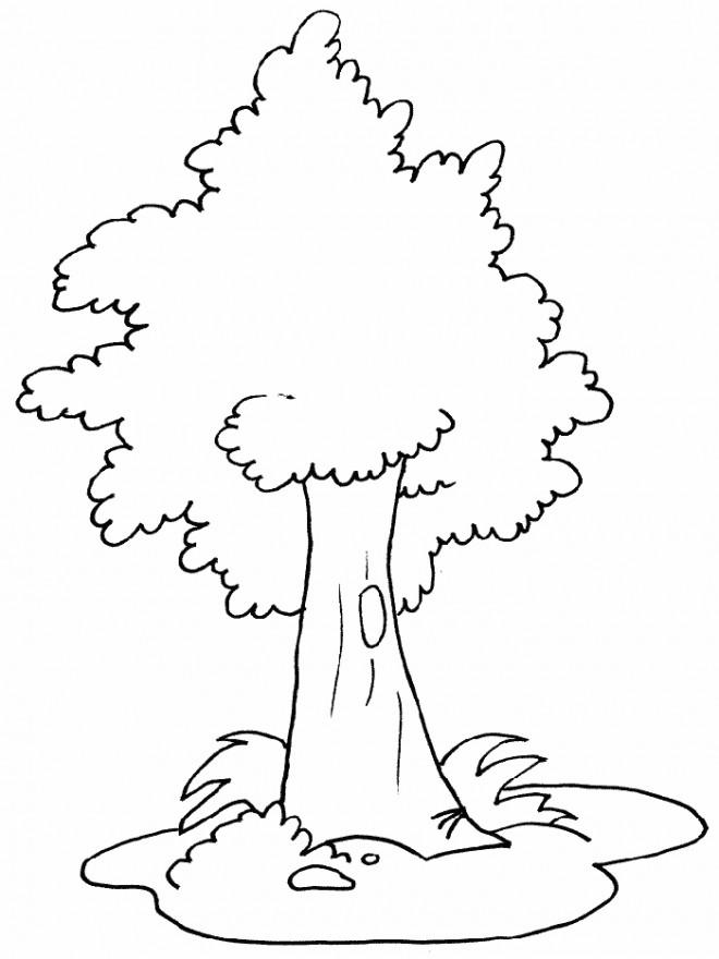 Coloriage et dessins gratuits Arbre pour enfant à imprimer