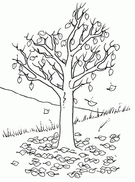 Coloriage et dessins gratuits Arbre sans Feuilles à découper à imprimer