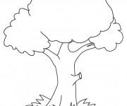 Coloriage et dessins gratuit Arbre stylisé à imprimer