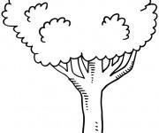 Coloriage et dessins gratuit Arbres 15 à imprimer