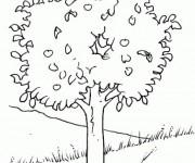 Coloriage et dessins gratuit Arbres 16 à imprimer