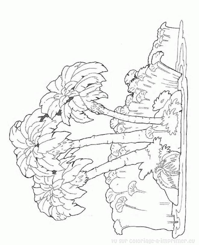 Coloriage et dessins gratuits Arbres d'Île à imprimer