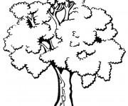 Coloriage et dessins gratuit Arbres en noir et blanc à imprimer