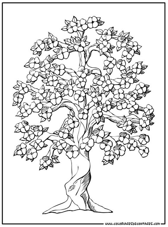 Coloriage et dessins gratuits Arbres et beaux fleurs stylisé à imprimer