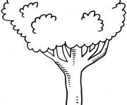 Coloriage et dessins gratuit Arbres facile à colorier à imprimer