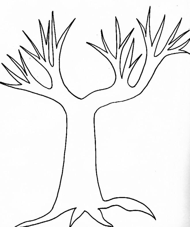 Coloriage et dessins gratuits Arbres nu Automne à imprimer
