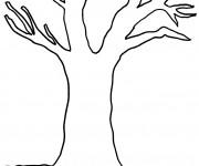 Coloriage arbres gratuit imprimer liste 60 80 - Dessin arbre nu ...