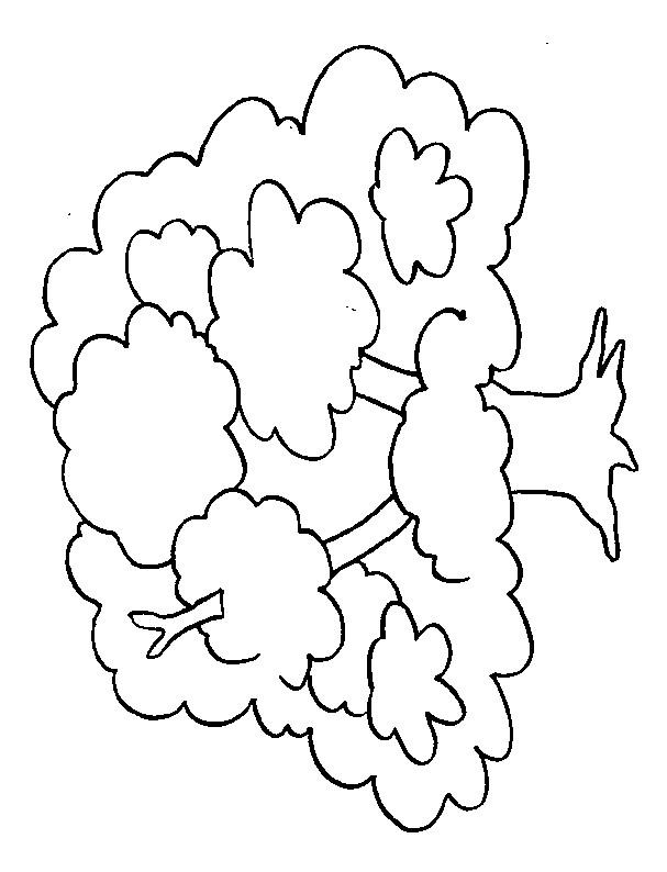 Coloriage et dessins gratuits Grosse Arbre à imprimer