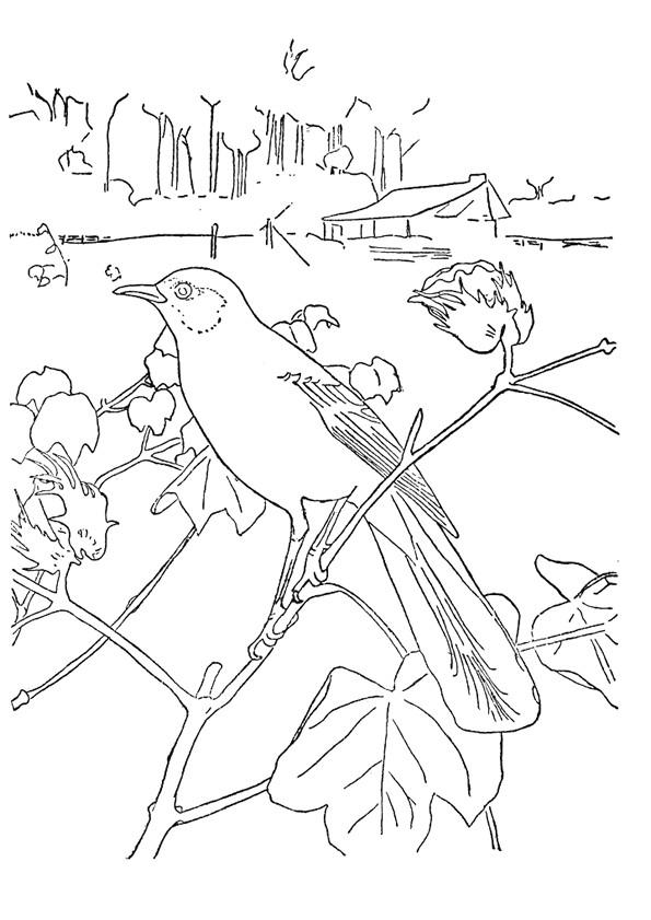 Coloriage et dessins gratuits Paysage de oiseau dans la Campagne à imprimer