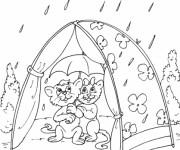 Coloriage Les Chats malheureux en Camping