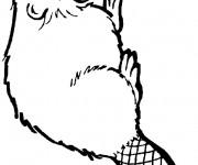 Coloriage dessin  Castor 9