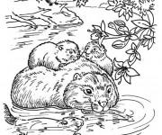 Coloriage et dessins gratuit Castor en Famille à imprimer