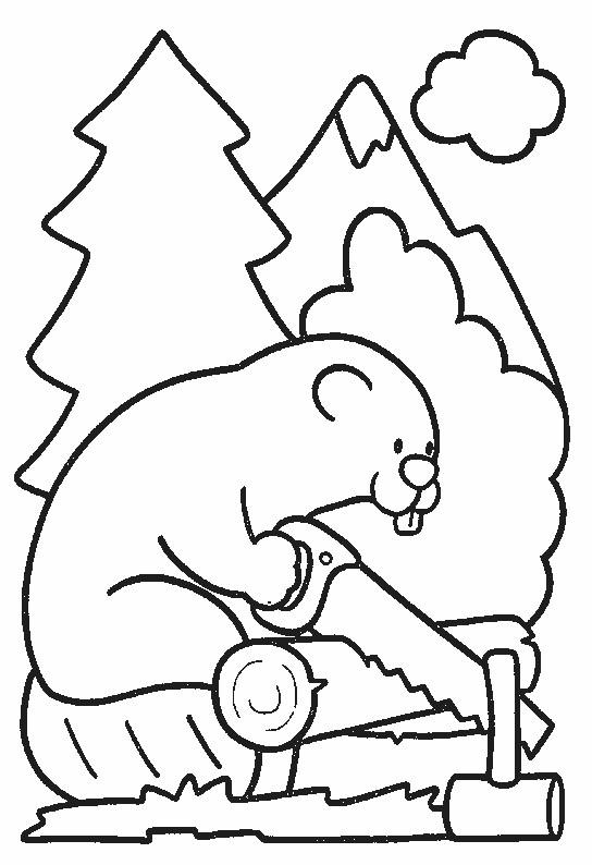 Coloriage et dessins gratuits Castor L'animal travailleur à imprimer