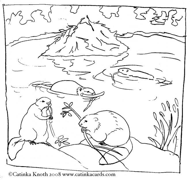 Coloriage et dessins gratuits Castors dans la nature à imprimer