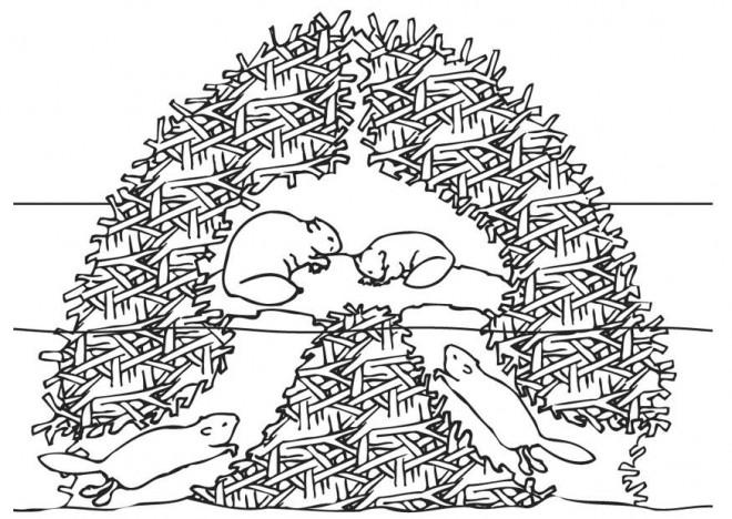Coloriage et dessins gratuits Famille Castor chez eux à imprimer