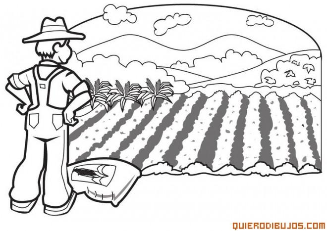 Coloriage et dessins gratuits Agriculture maternelle à imprimer