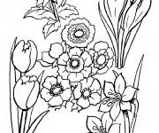 Coloriage dessin  Champs 18