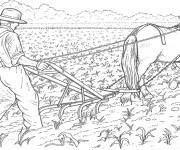 Coloriage Fermier laboure la terre
