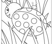 Coloriage dessin  Coccinelle 14
