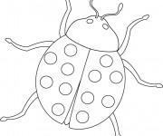 Coloriage dessin  Coccinelle 15