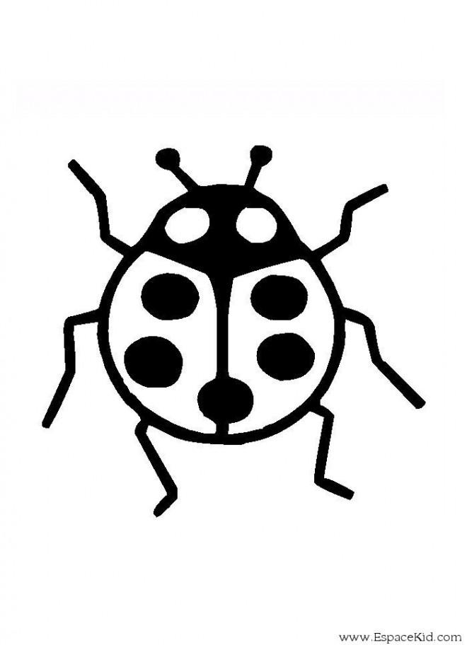 Coloriage coccinelle d corer dessin gratuit imprimer - Dessin coccinelle facile ...