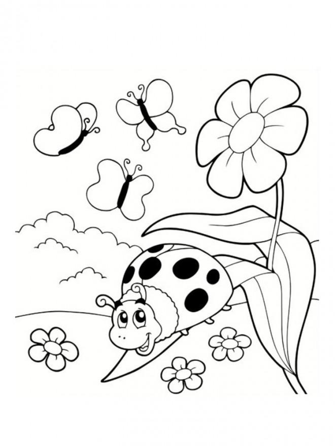 Coloriage Coccinelle et les insectes du jardin dessin gratuit à imprimer