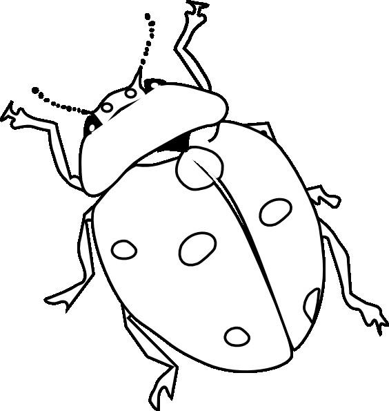 Coloriage Coccinelle et ses longues antennes dessin ...