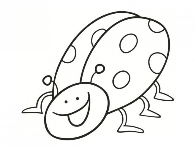 Coloriage Coccinelle humour dessin gratuit à imprimer