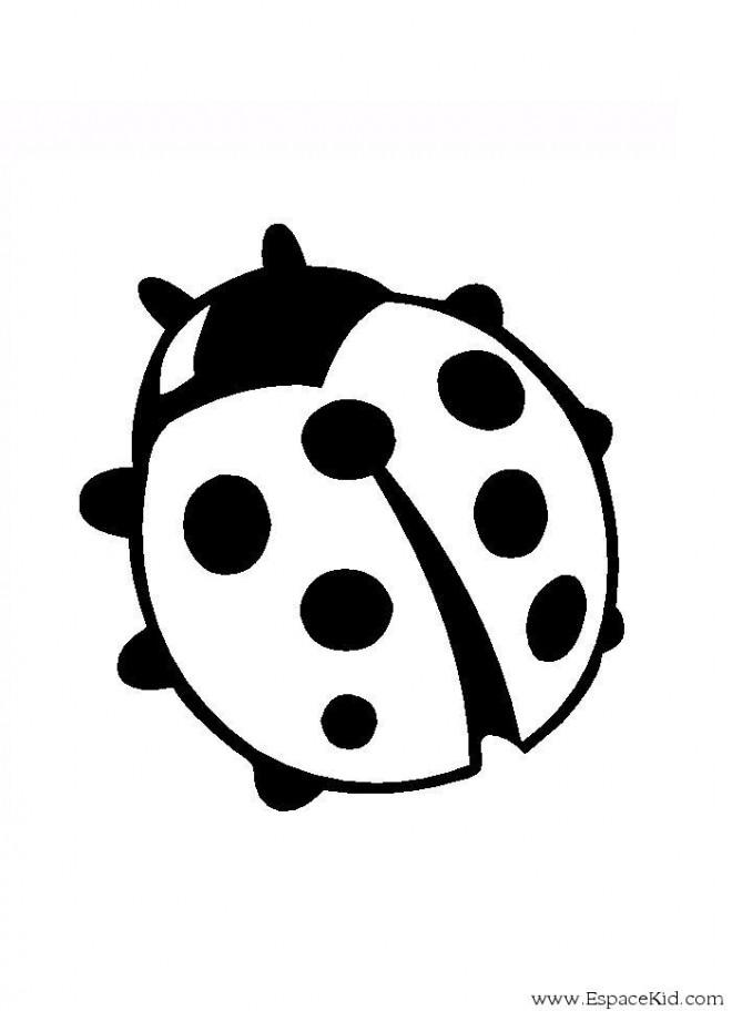 Coloriage coccinelle ronde dessin gratuit imprimer - Dessiner une coccinelle ...