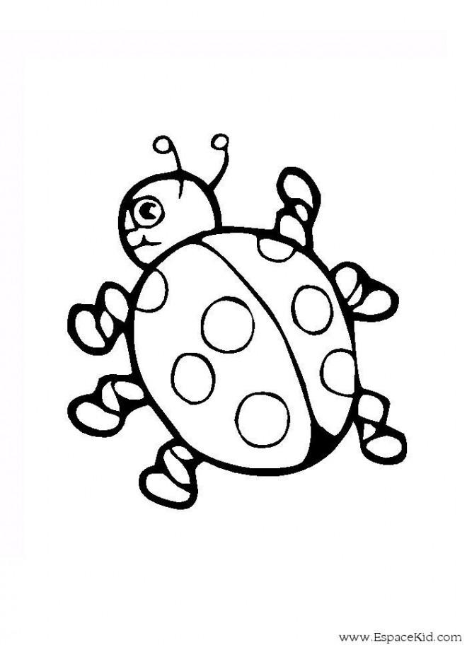 Coloriage coccinelle stylis dessin gratuit imprimer - Dessin coccinelle facile ...