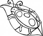 Coloriage et dessins gratuit Coccinelle sur feuille à imprimer