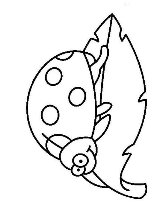 Coloriage coccinelle sympathique dessin gratuit imprimer - Dessin coccinelle facile ...